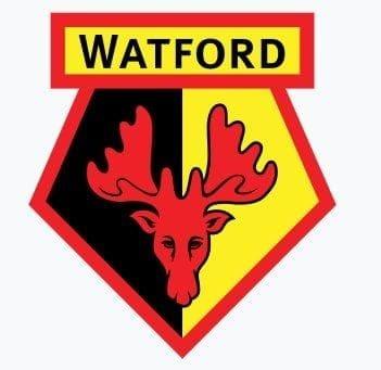 FC Watford,Logo, Wappen